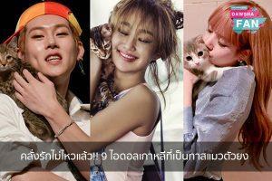 คลั่งรักไม่ไหวแล้ว!! 9 ไอดอลเกาหลีที่เป็นทาสแมวตัวยง Hollywood | justinbieber | K-pop | Bnk48